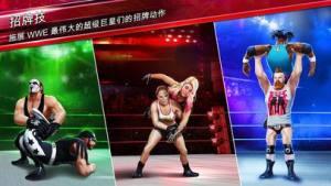 WWE 2019狂热摔跤最新版图3