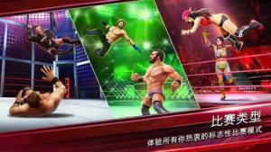 WWE 2019狂热摔跤最新版图1