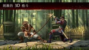 忍者的征服变态版图3