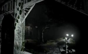 出不去的林中小屋手机版图4