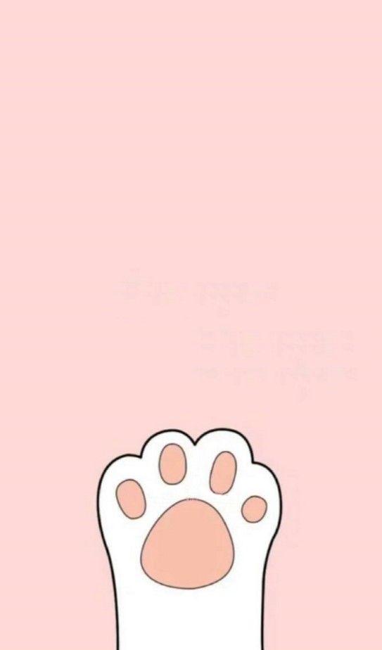 猫脚官方手机app软件下载图片4