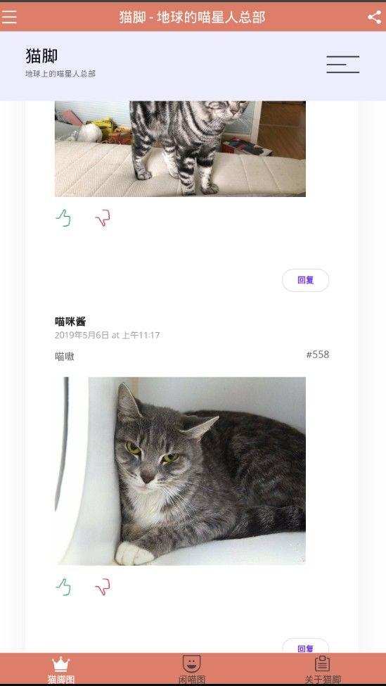 猫脚官方手机app软件下载图片3