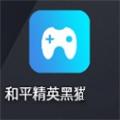 和平精英黑猫助手app官网版下载 v1.7.7