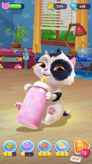 My Cat电子猫咪游戏破解版图2