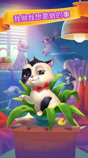 My Cat电子猫咪游戏破解版图5