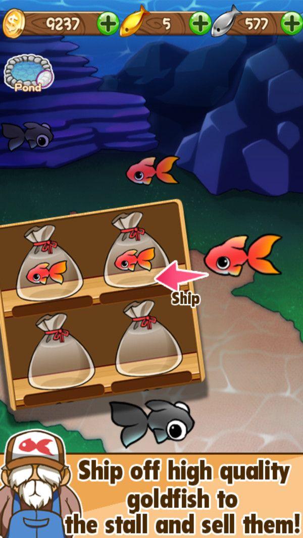 金鱼的日常游戏最新中文版下载图5: