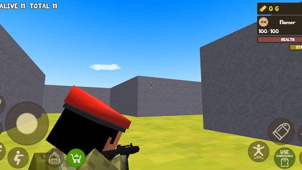 方块皇家生存战游戏最新中文版下载图片2