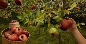 果园模拟器手机版图4