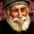 流浪汉模拟器手机游戏最新版下载 v3.0.9
