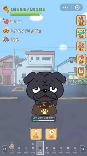 小宠物大步走安卓版图4