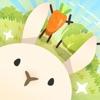 兔子可爱过度中文版