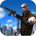 美国真正的战争3D版游戏