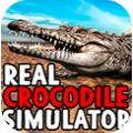 真正的鳄鱼模拟器3D中文版