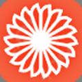 金桔花贷款app