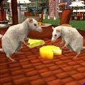 流浪鼠家庭模拟器中文版