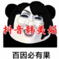 网红韩美娟表情包APP