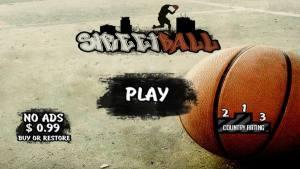 街头篮球冠军安卓版图2