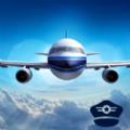 模拟翱翔手机版