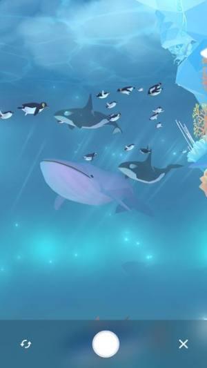 金多多水族馆红包版图3