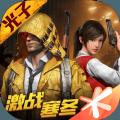 和平精英正版游戏官方网站下载