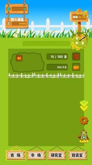 夏日农场游戏图1
