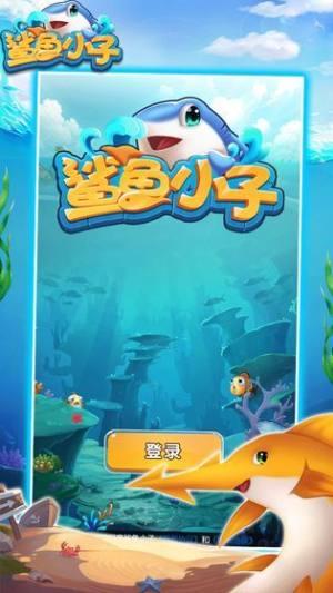 鲨鱼小子游戏图4