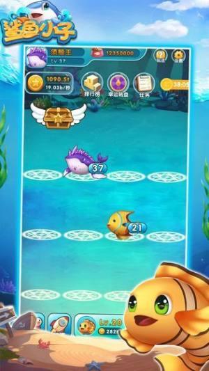 鲨鱼小子游戏图5
