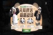 和平精英熊猫套装值不值得入手?胖达团团和胖达圆圆套装性价比分析[多图]