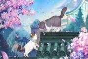 喵与筑手游评测:创造猫咪温暖世界[多图]