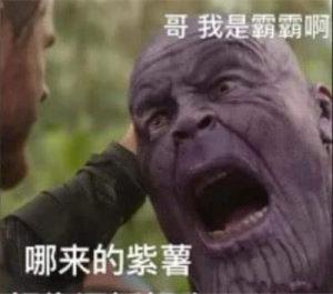 我紫薯于你表情包图片图3