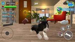虚拟猫模拟器中文版图3