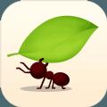 蚂蚁王国游戏
