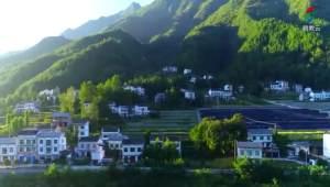 武汉教育电视台我爱你中国视频回放图4