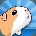 养豚鼠进化模拟器游戏