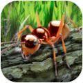 蚂蚁荒野生存模拟破解版