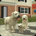 城市狗狗模拟生存游戏