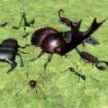 臭蟲戰斗模擬器3D游戲