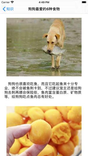 爱尚萌犬App图1
