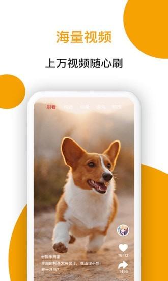小狗看看App下载官方版图4: