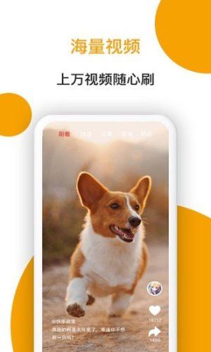 小狗看看App图4
