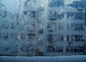蚂蚁庄园冰窗花在哪一侧 冰窗花在玻璃里面还是外面图片1