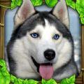 流浪狗生存模拟器游戏