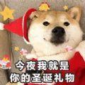 抖音最火圣诞老人图片