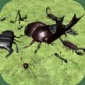 異國昆蟲大軍中文版