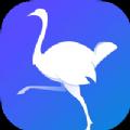 鸵鸟快讯APP官方版 v1.0.0