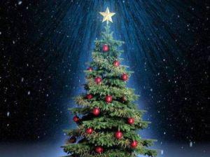 满屏都是圣诞树App图3