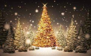 满屏都是圣诞树App图1