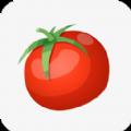 西红柿小说App