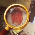 脑洞解谜大侦探游戏
