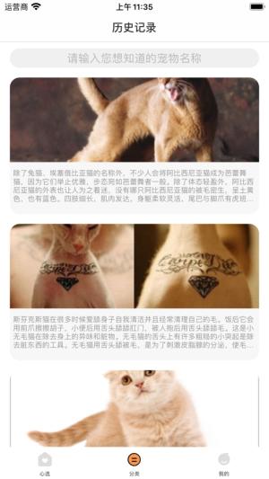 宠物小助手App图1